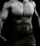 Torso of muscular shirtless man in the dark Royalty Free Stock Photos