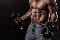 Torso potente dell'atleta Fotografia Stock