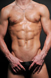 Torso with six-pack. Male torso with muscled abs Stock Photos