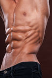 Torso with six pack. Male torso with strong abs Stock Images