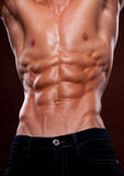 Torso with six pack. Male torso with strong abs Royalty Free Stock Image