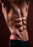 Torso with six pack Stock Image