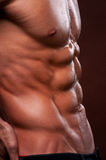 Torso with six pack. Male torso with strong abs Stock Image