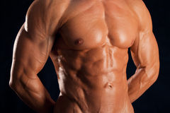 Torso of the strong sportsman Royalty Free Stock Image