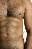 Torso of Tanned Man Stock Image