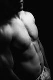 Torso y abdomen musculares del hombre con la carrocería atractiva Fotos de archivo libres de regalías