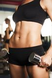 Torso of a young fit woman lifting dumbbells Royalty Free Stock Image