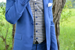 Torso of the young man in a blue jacket and a checkered vest Royalty Free Stock Image