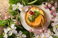Tort na białym talerzu z wiosny okwitnięciem rozgałęzia się Zdjęcie Stock