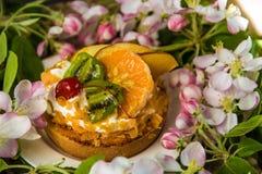 Tort na białym talerzu z wiosny okwitnięciem rozgałęzia się Zdjęcia Royalty Free