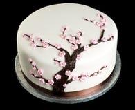 Tort na odosobnionym czarny tle Zdjęcie Royalty Free