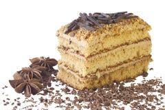 Tort z czekoladą Zdjęcie Stock