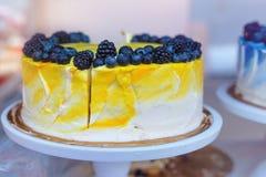 Tort z jagodami piekarnia domowej roboty Zdjęcia Royalty Free