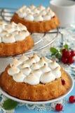 Tort z kulebiakiem wziąć miejsce i rodzynki. Obrazy Stock