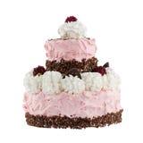 Tort z malinkami; Ścinek ścieżka Fotografia Royalty Free