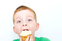 Torta 7 Imagenes de archivo