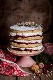 Torta acodada de la Navidad con el atasco de frambuesa y la crema azotada Fotos de archivo