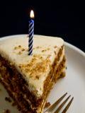Torta & candela di buon compleanno Immagini Stock