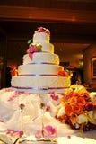 Torta amplia Foto de archivo libre de regalías