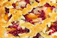 Torta casalinga con le mele, le albicocche, le banane ed il ribes rosso su bianco fotografia stock libera da diritti