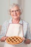 Torta casalinga del apricoat Fotografie Stock Libere da Diritti
