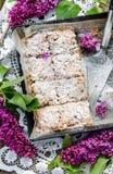 Torta casalinga della briciola Immagini Stock
