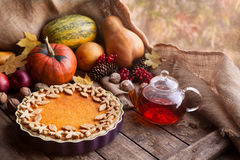 Torta caseiro tradicional da galdéria da abóbora saudável Fotos de Stock Royalty Free