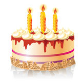 Torta celebradora Imagen de archivo libre de regalías