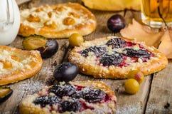 Torta checa tradicional con los ciruelos y las pasas fotografía de archivo libre de regalías