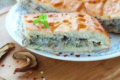 torta con carne ed i funghi Fotografie Stock Libere da Diritti