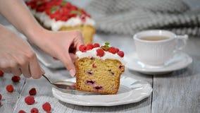 Torta con las frambuesas y las hojas de menta metrajes