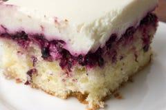 Torta con las zarzamoras fotos de archivo