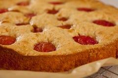 Torta con los ciruelos Fotografía de archivo libre de regalías