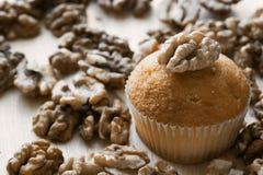 Torta con los walnunts Imagenes de archivo