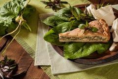 Torta con spinaci e feta fotografie stock libere da diritti