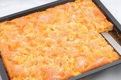 Torta cotta fresca Fotografia Stock