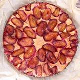 Torta da ameixa com ameixas frescas Fotografia de Stock