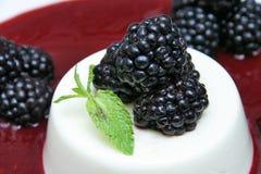 Torta da amora-preta Imagem de Stock Royalty Free