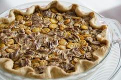 Torta da noz-pecã e do kumquat Imagem de Stock