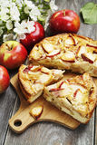 Torta de Apple charlotte Imagem de Stock Royalty Free
