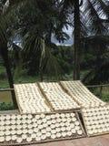 Torta de arroz Imagen de archivo libre de regalías