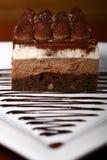 Torta de capas deliciosa Imagen de archivo