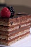 Torta de chocolate acodada Imágenes de archivo libres de regalías