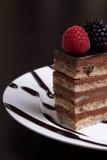 Torta de chocolate acodada fotografía de archivo libre de regalías