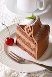 Torta de chocolate adornada con el primer de la menta y del azúcar en polvo Imagen de archivo