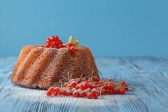 Torta de chocolate con el sistema de bayas fresco Fotos de archivo