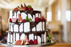 Torta de chocolate con los higos y las frambuesas Fotos de archivo