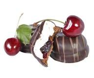 Torta de chocolate del postre con la cereza fresca Foto de archivo
