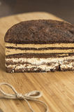 Torta de chocolate deliciosa Fotografía de archivo libre de regalías