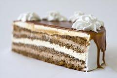 Torta de chocolate deliciosa Imagenes de archivo